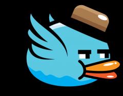 bird15-240x187