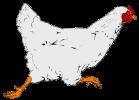 hen2-custom